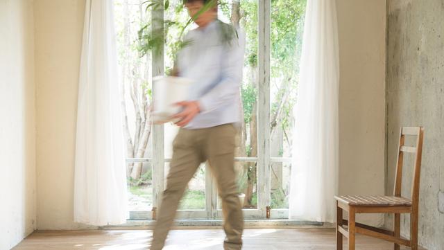 窓際に観葉植物を飾る