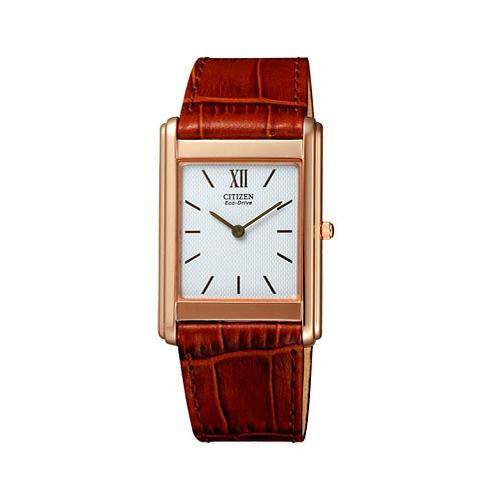 シチズン CITIZEN シチズン コレクション エコ ドライブ メンズ 腕時計 SIV66-5171 国内正規